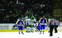Common theme for hockey team