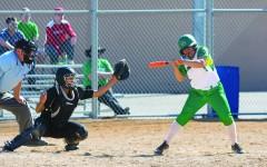 Softball team suffers trio of losses