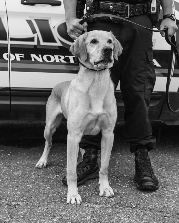 Drug dog joins UPD