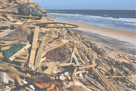 Hurricane forces pile up debris on a coastal beach