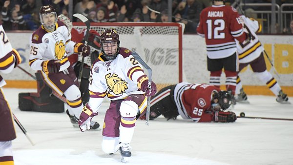 An Early End to Hockey Season
