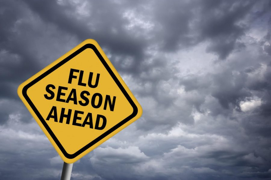 Fighting Cold and Flu Season